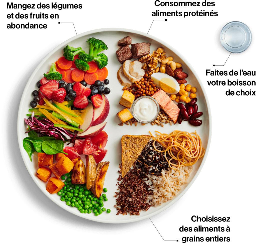guide-alimetaire-canadien-2019-bio-terre-tendances-alimentaires