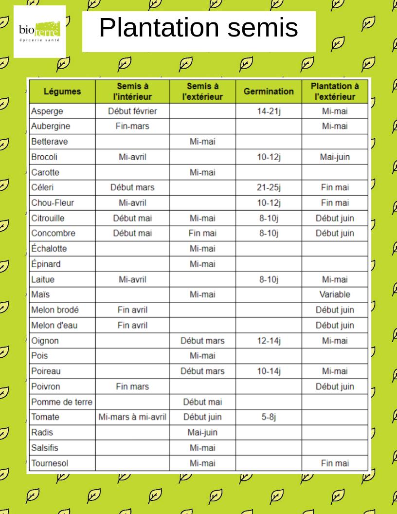 Bio-Terre-Plantation-semis-calendrier-printemps-fruits-legumes