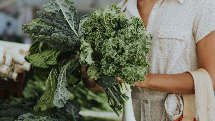 L'alimentation locale et bio : au service de l'environnement