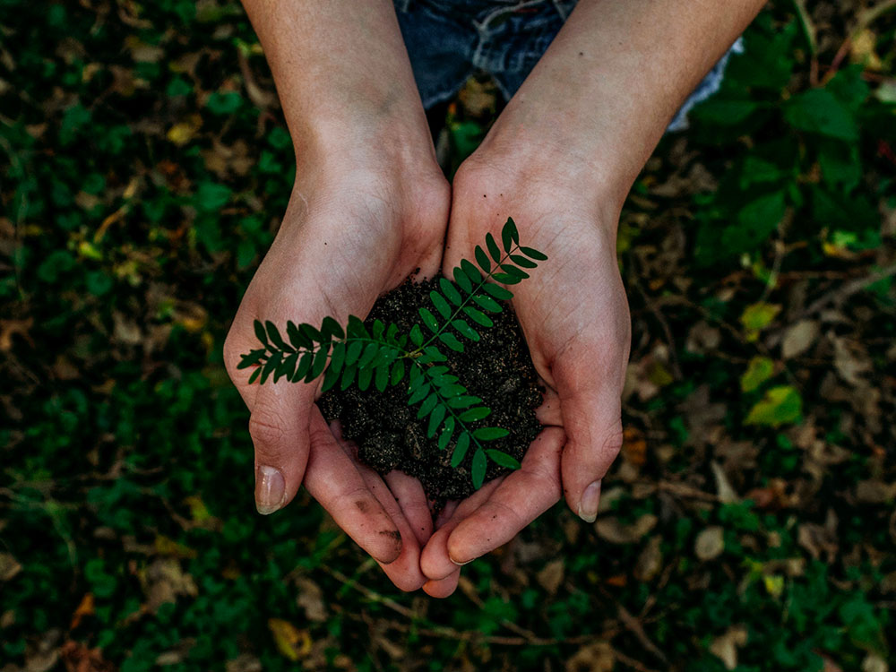 5 gestes écologiques à poser au printemps