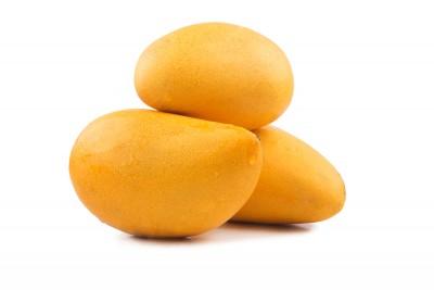 bio terre fruits et légumes proposer vos produits