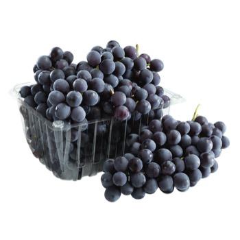 bio terre fruits legumes proposer vos produits