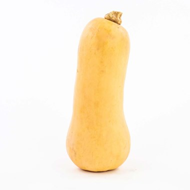 Bio-Terre fruits legumes proposer produits