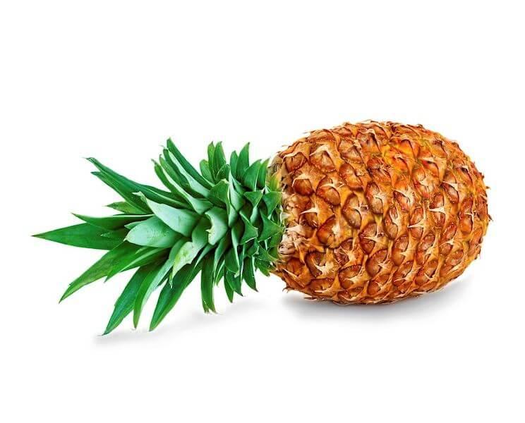 bio terre produits fruits legumes proposer produits