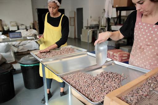 avanaa-chocolat-bioterre-montreal